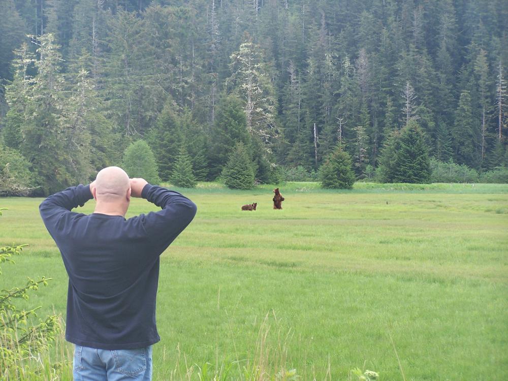 looking at bears.jpg