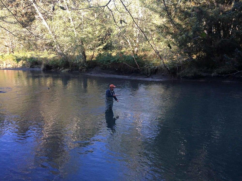 Targeting Salmon in Sitka Alaska