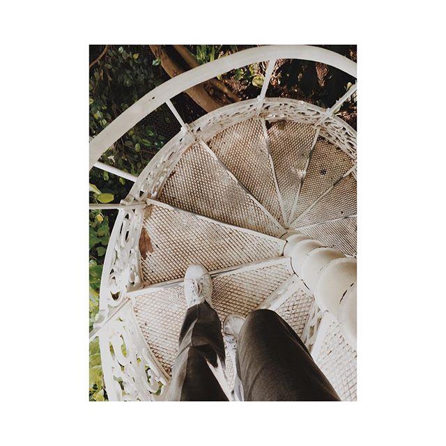 Fem steg bakåt, två steg fram. 🐾 #stairs #adventure