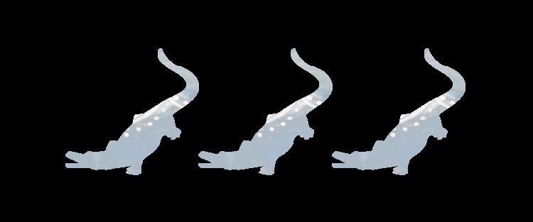 three-alligator.png