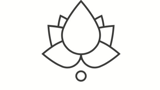 WORKSHOPS >    Behalve voor yogalessen kun je bij Wonderschoon Yoga ook terecht voor inspirerende workshops, lezingen en cursussen.