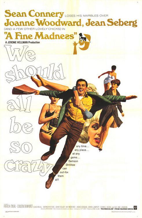 A Fine Madness (1966) 📖
