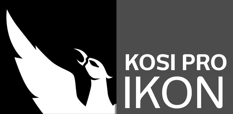 kosi-flex-logo.png