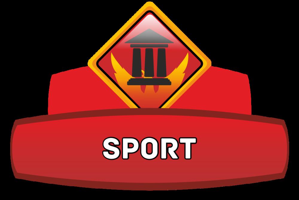 Landmark Pattern Sport Series