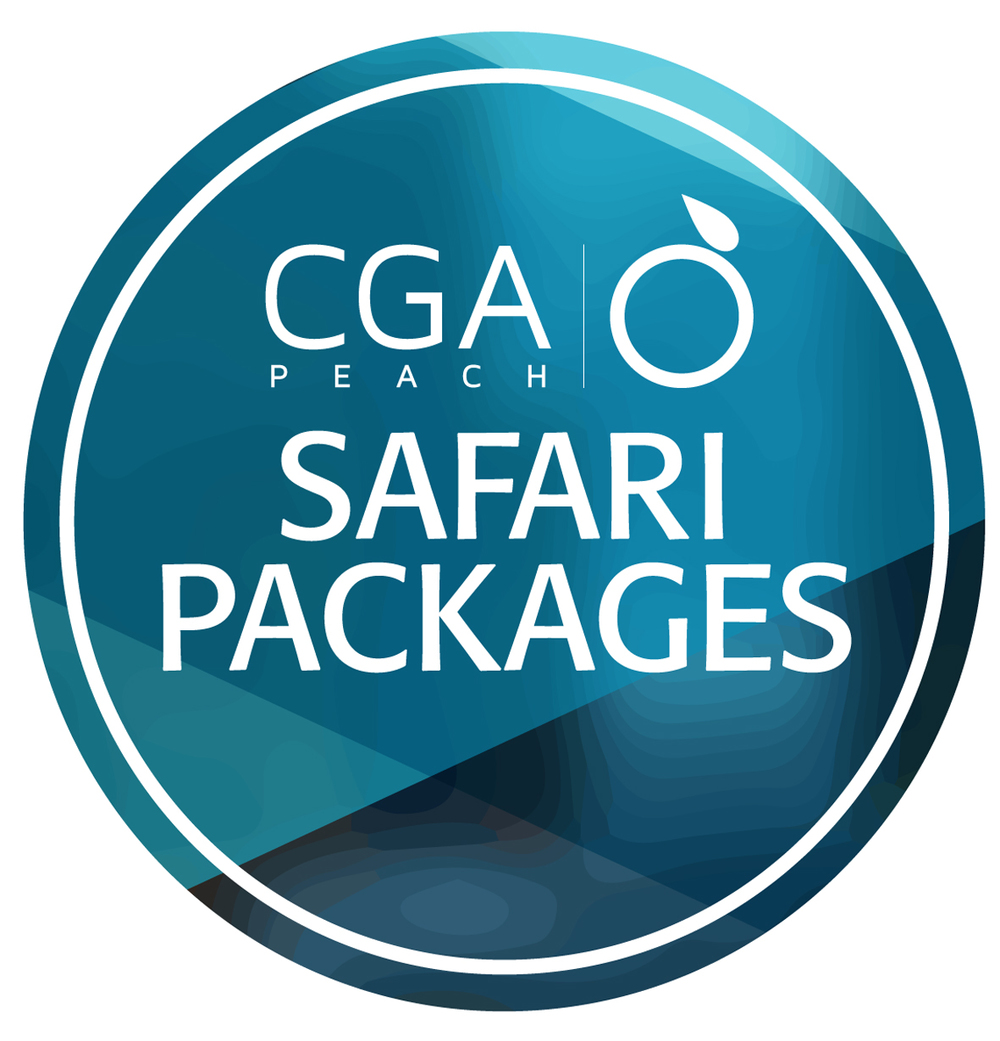 Safari logo copy.jpg
