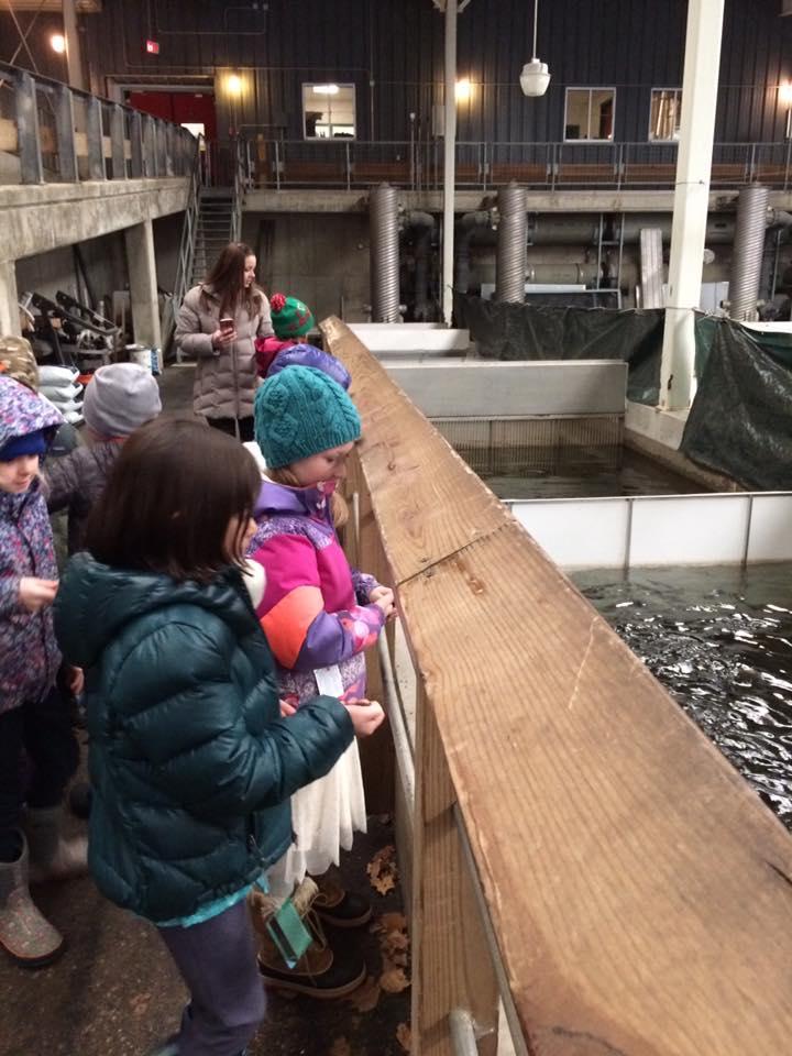 Fish Hatchery 2.jpg