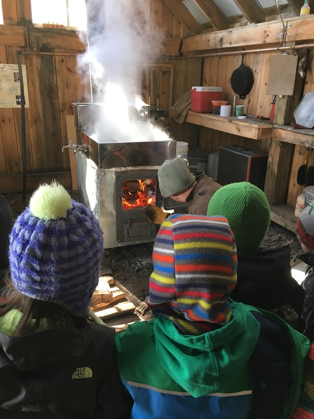 maple sugaring K (1).jpg