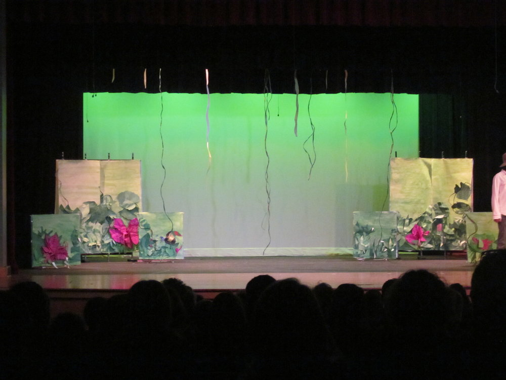 Wild Journey Rain Forest stage set.JPG