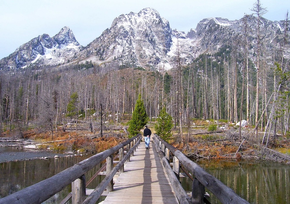 Wooden bridge in Grand Teton National Park.