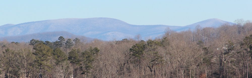 Springer Mt