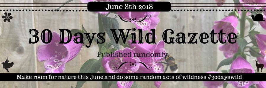 30 Days Wild Blog