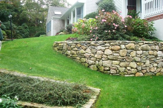 Image Source:  Pinterest  from  Hamilton Tree and Landscape