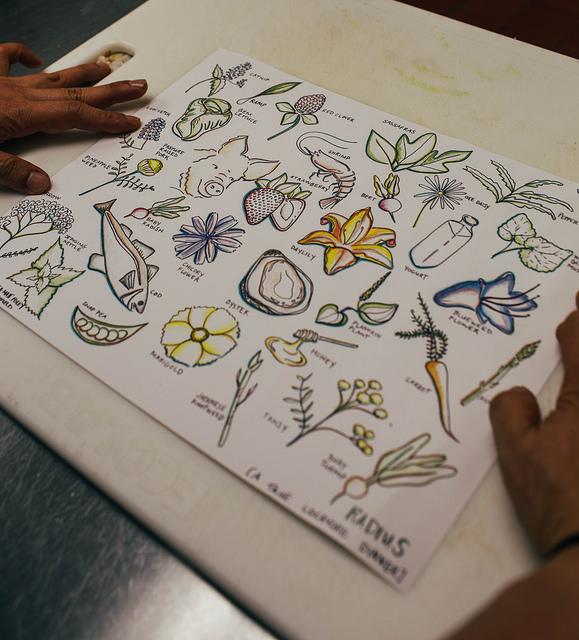Stunning menus drawn by Laurel Greenfield