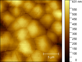 Aragonite platelets forming the nacre of a pearl — Topographic AFM image