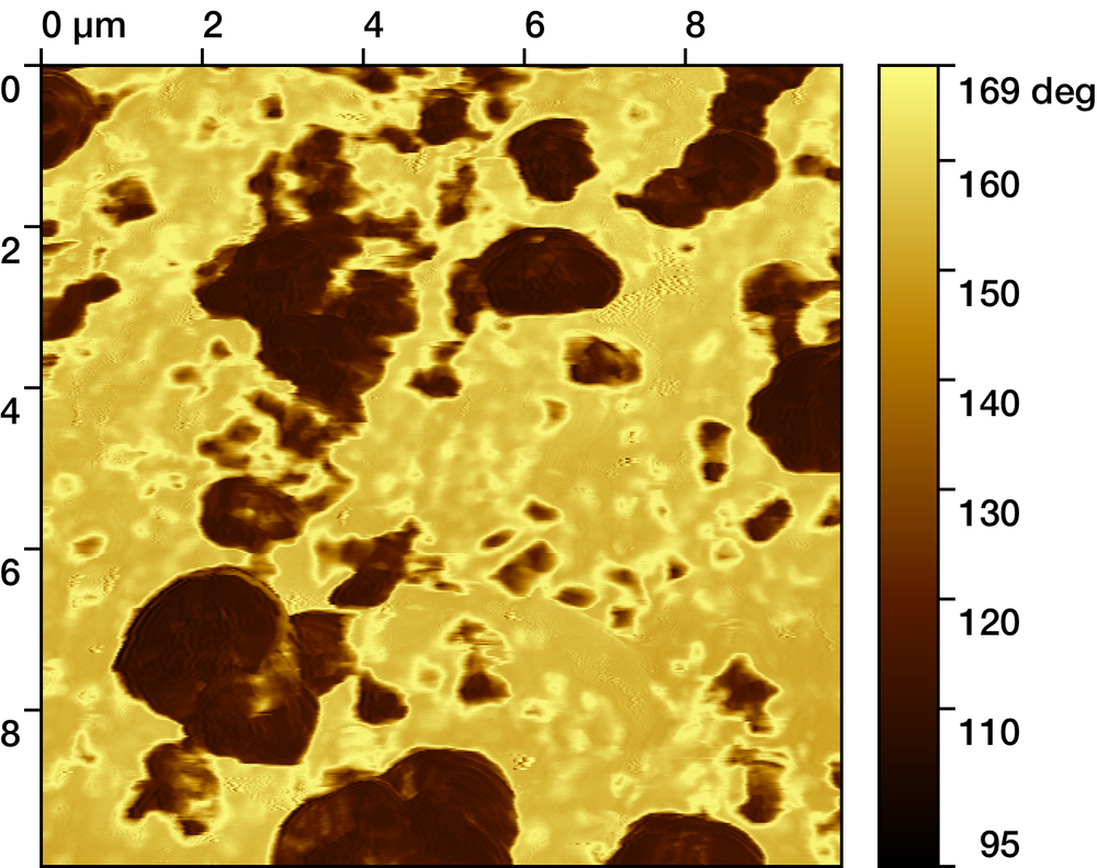 Corresponding phase image of a silica-polymer composite.