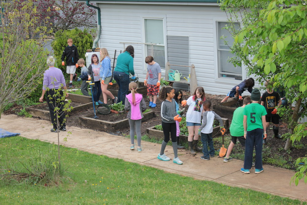 Taking Care - Our annual Stewardship Day is just one of many days when students work together, outside the classroom, to take responsibility for the spaces that are important to them.