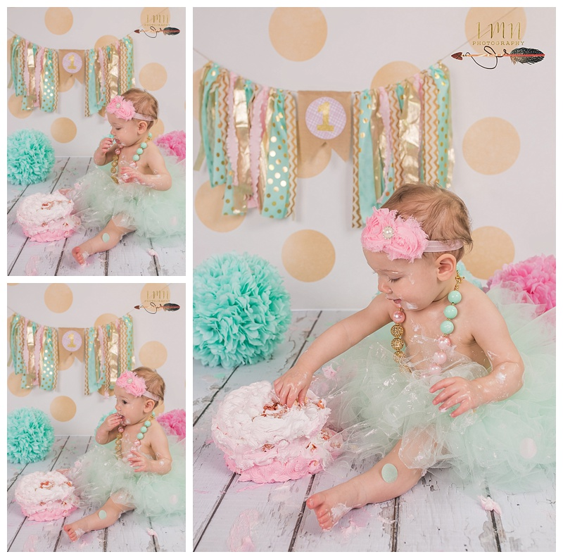 Tomball Texas 1st Birthday Photographer
