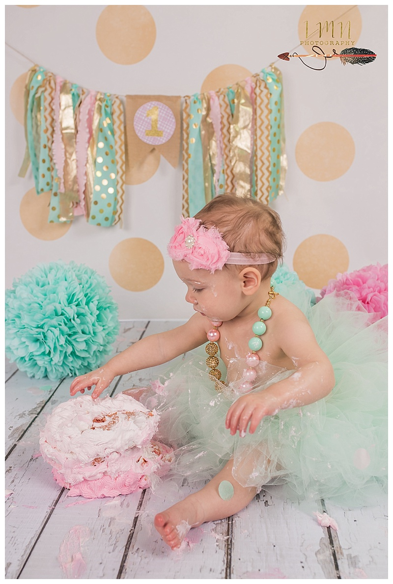 Katy Texas 1st Birthday Photography
