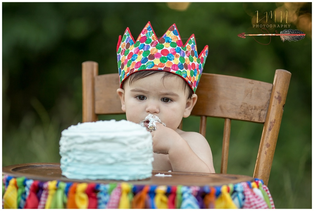 Cypress Texas 1st Birthday Photographer