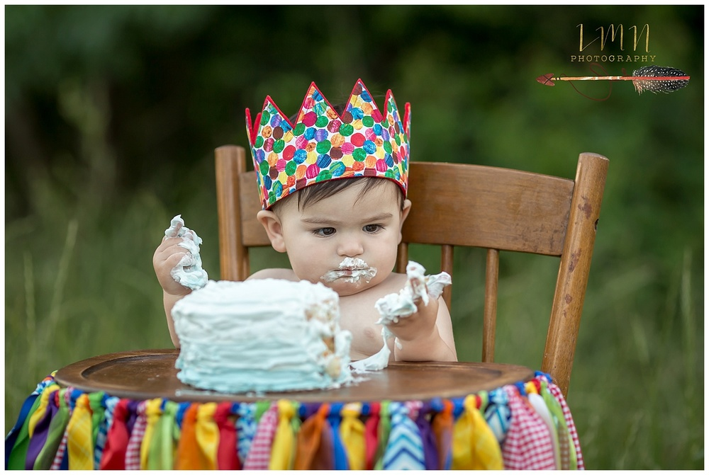 Katy Texas 1st Birthday Photographer