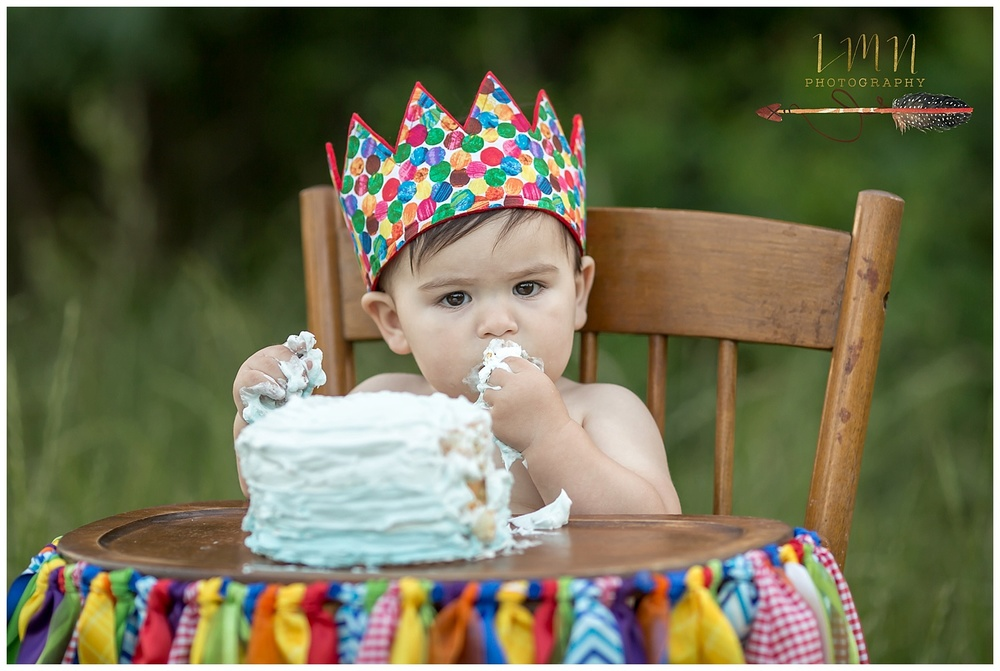 Katy TX 1st Birthday Photographer