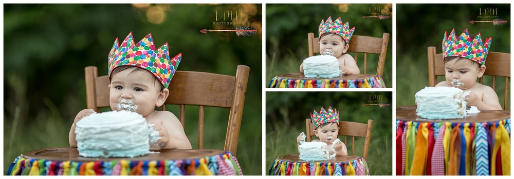 Spring TX 1st Birthday Photographer