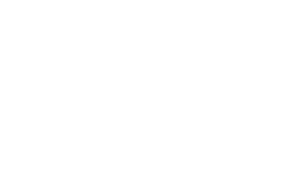 Pest Control - No Contracts - Guaranteed