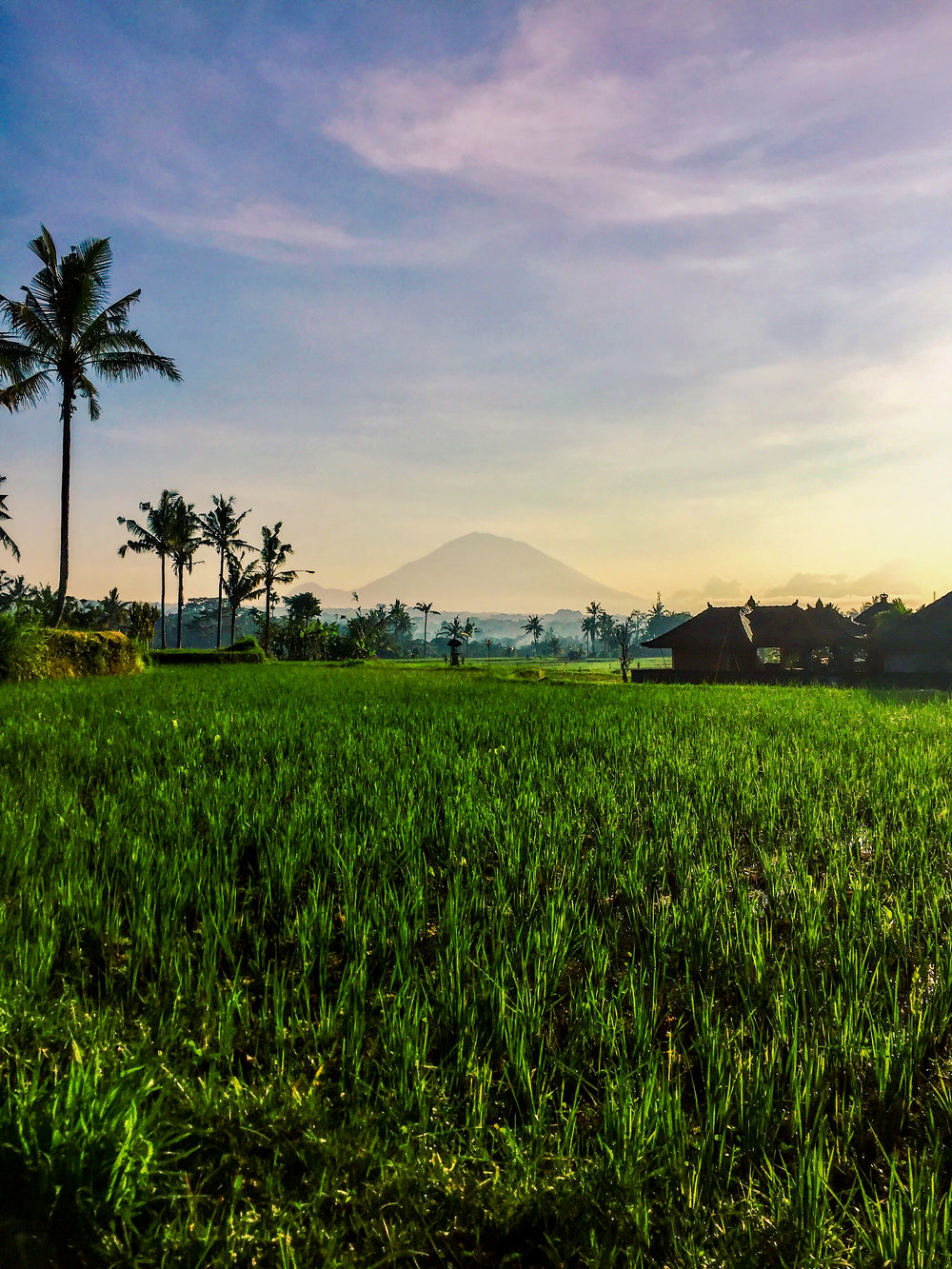 Bali, Indonesia, Asia | www.DoLessGetMoreDone.com |