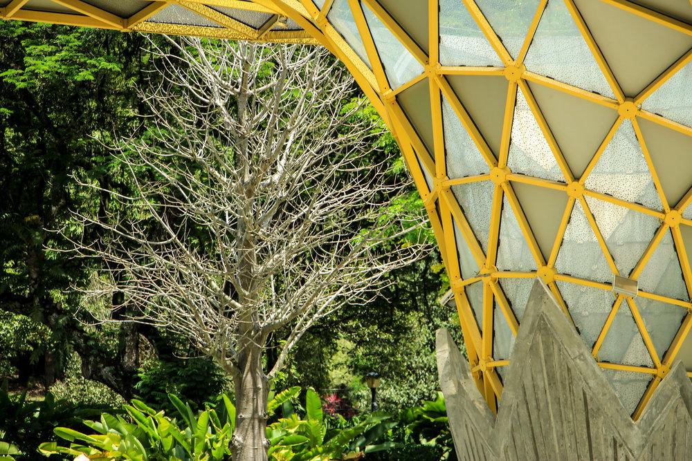 Perdana Botanical Garden, Kuala Lumpur, Malaysia | DoLessGetMoreDone.com |