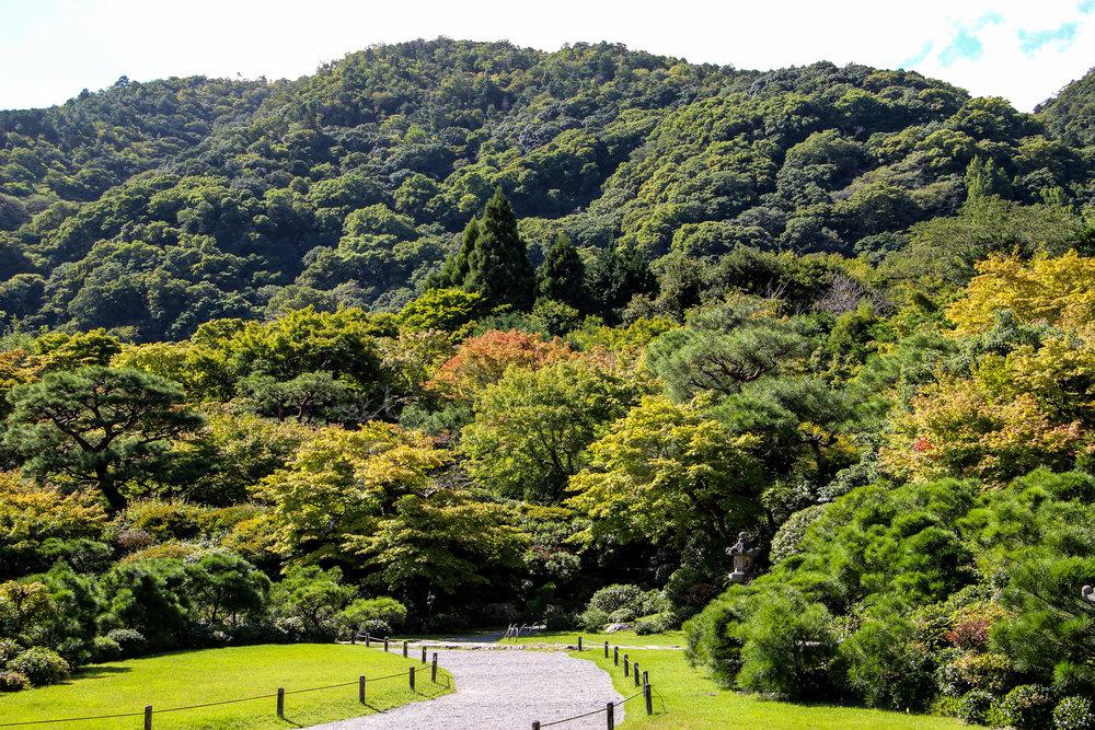 Ōkōchi Sansō,Kyoto, Japan, East Asia | DoLessGetMoreDone.com |