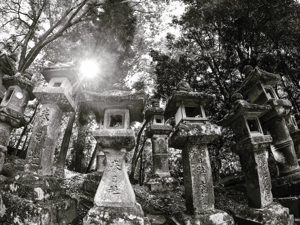 torii gate and stone lanterns, Nara, Japan, Asia | DoLessGetMoreDone.com | Where Do You Feel Right At Home?
