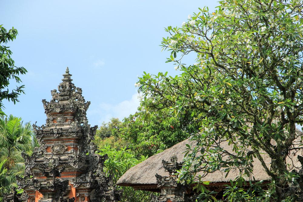 Bali, Asia | DoLessGetMoreDone.com |