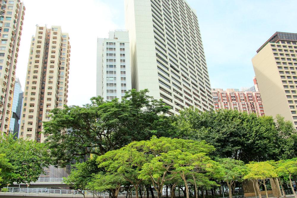 Hong Kong, Hong Kong Island, green, tree, sustainability, Asia | DoLessGetMoreDone.com |