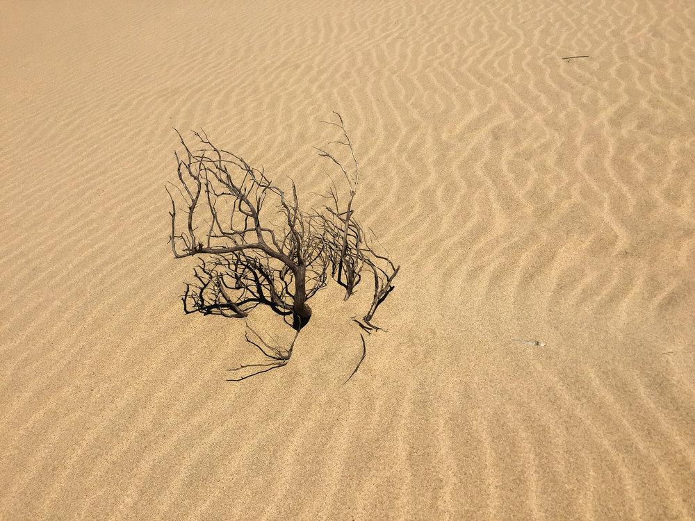 Praia da Bordeira, Portugal, Europe | DoLessGetMoreDone.com | What can we do to make it better?