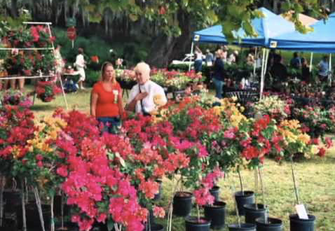 FARMDADDY MT. DORA PLANT & GARDEN FAIR
