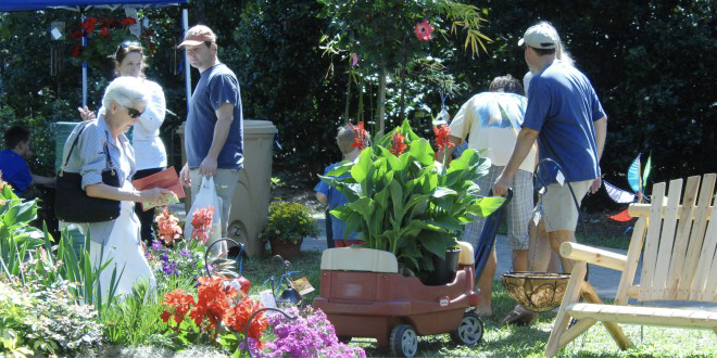 FarmDaddy Leu Gardens Annual Plant Sale
