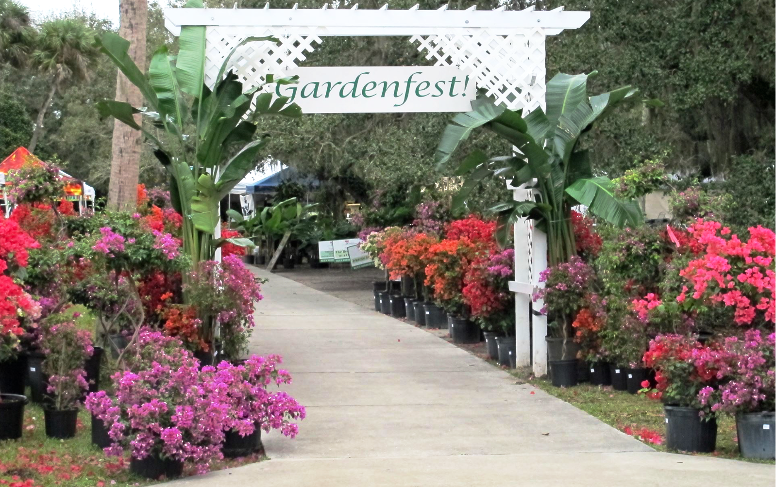 Events — Garden - Self Watering Containers | FarmDaddy on florida landscape architecture, florida landscape plants, florida home designs, florida landscaping, florida small garden designs,