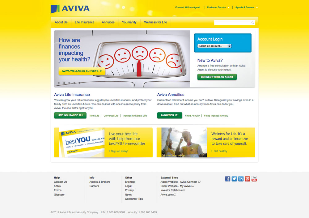 AvivaUSA.com before the acquisition.