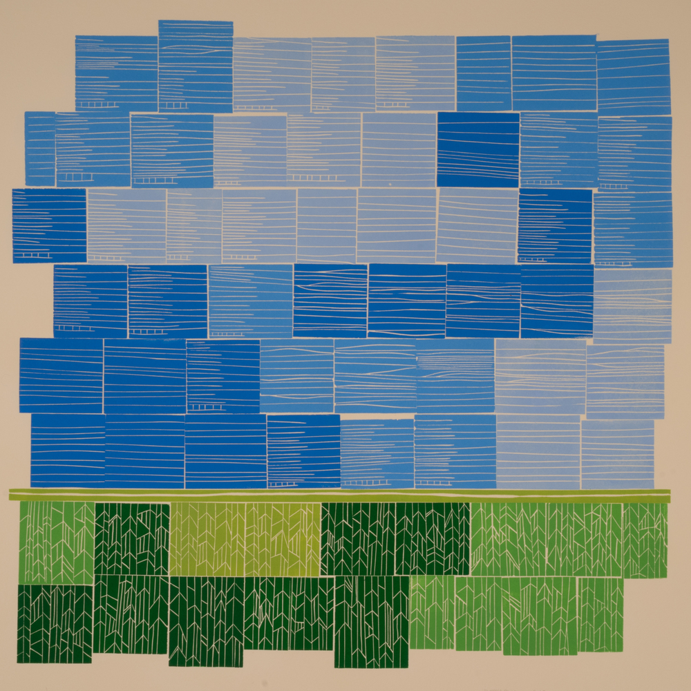 Little Boxes |  2015  | linocut, oil-based ink, 69 blocks | 28.5 x 26.5