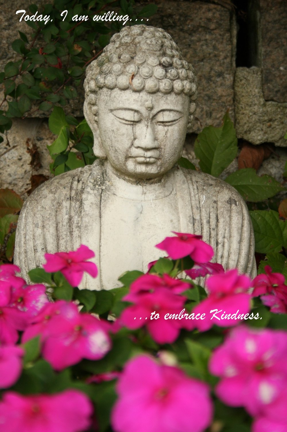 Buddha in blooms_embrace kindness.jpg