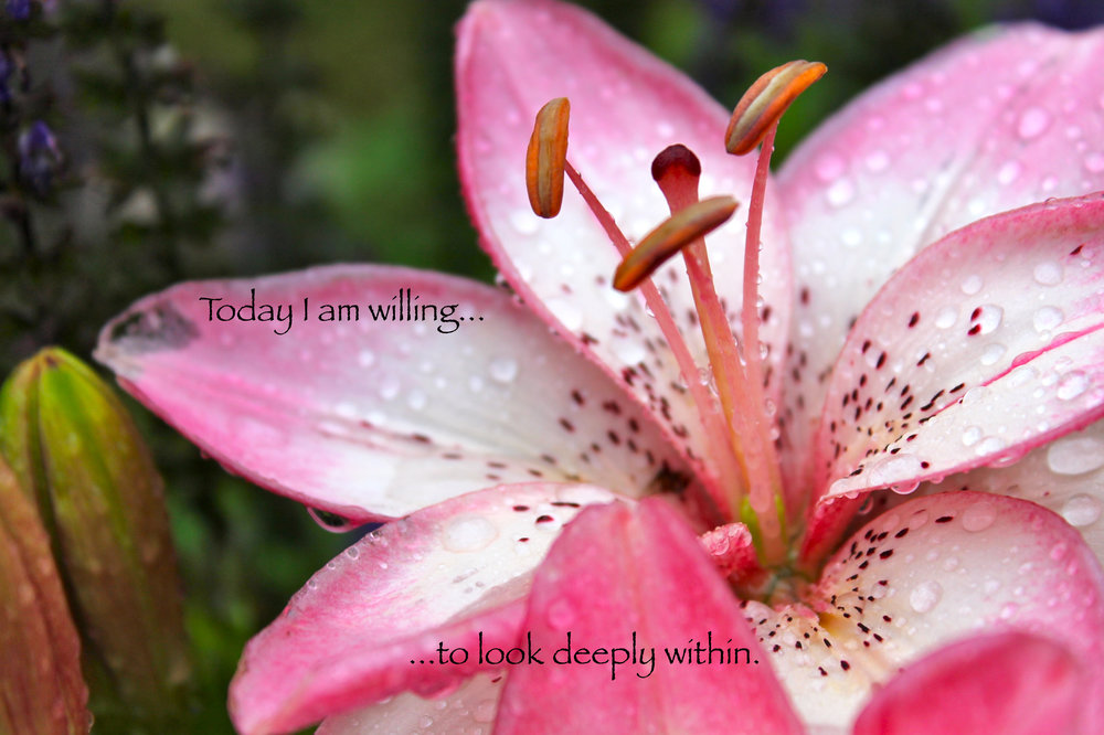 Tiger Lily_deeply within.jpg