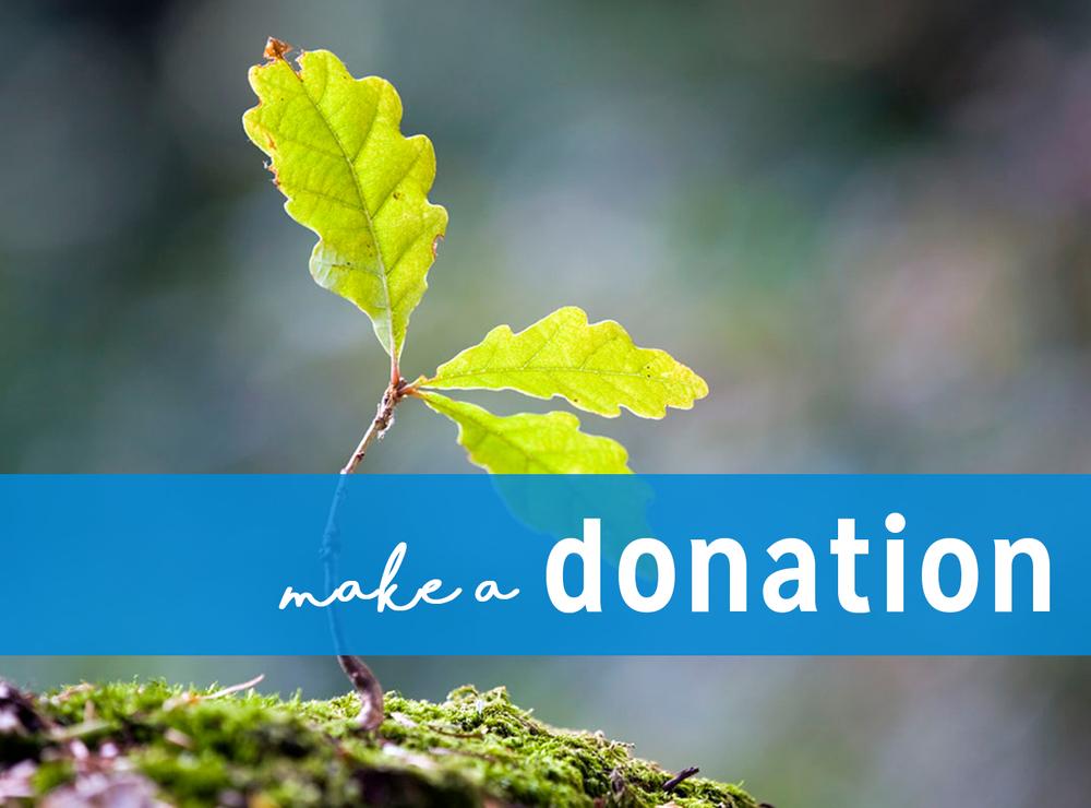 donationbuttonnew.jpg