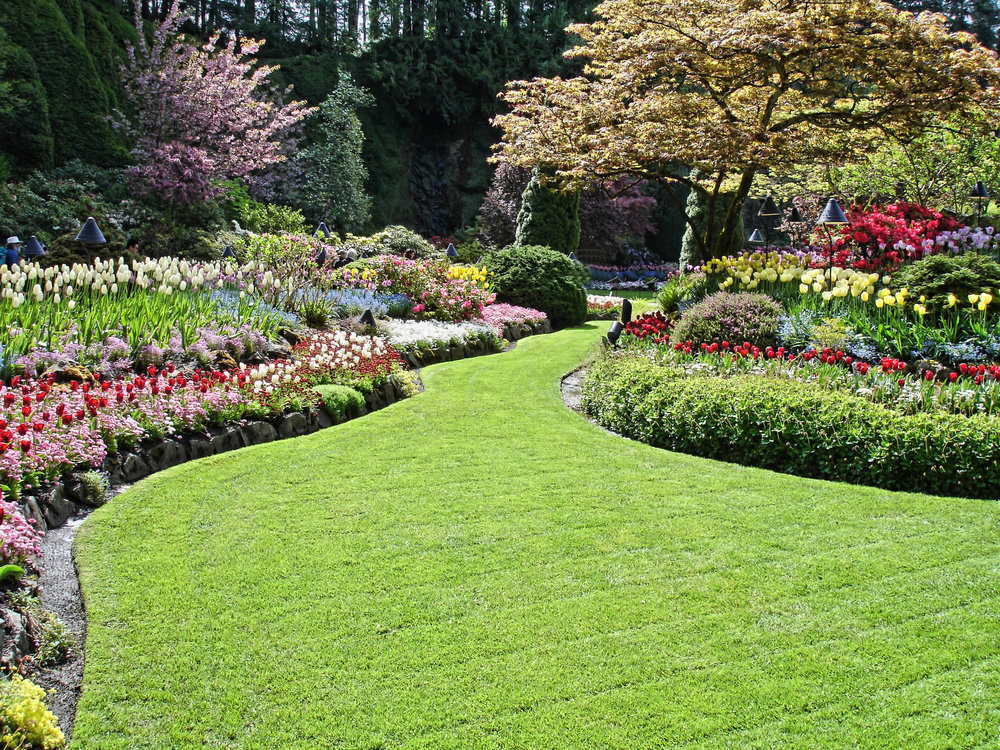 raleigh-landscaping.jpg