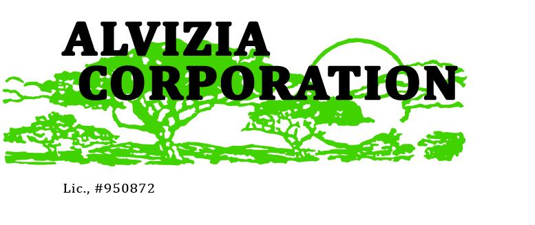 17_Alvizia-Logo_JPEG.jpg