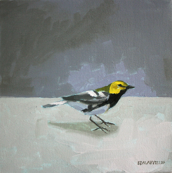 """Black-Throated Green Warbler   2012 oil on canvas 10 x 10"""""""