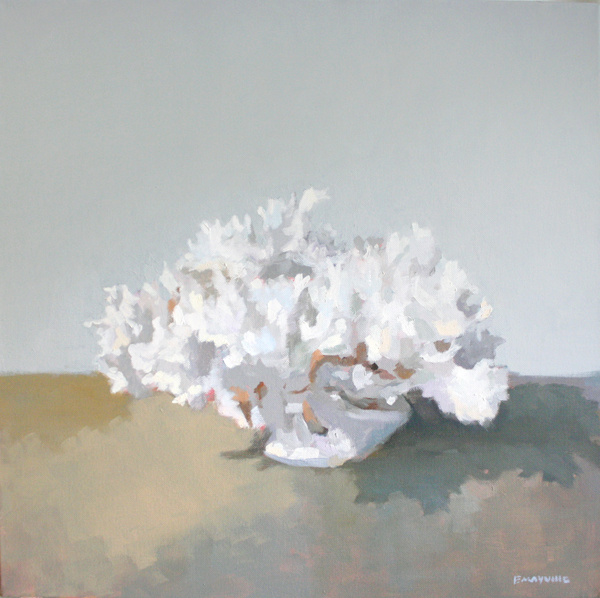 """Coral 2   2012 oil on canvas 20 x 20"""""""