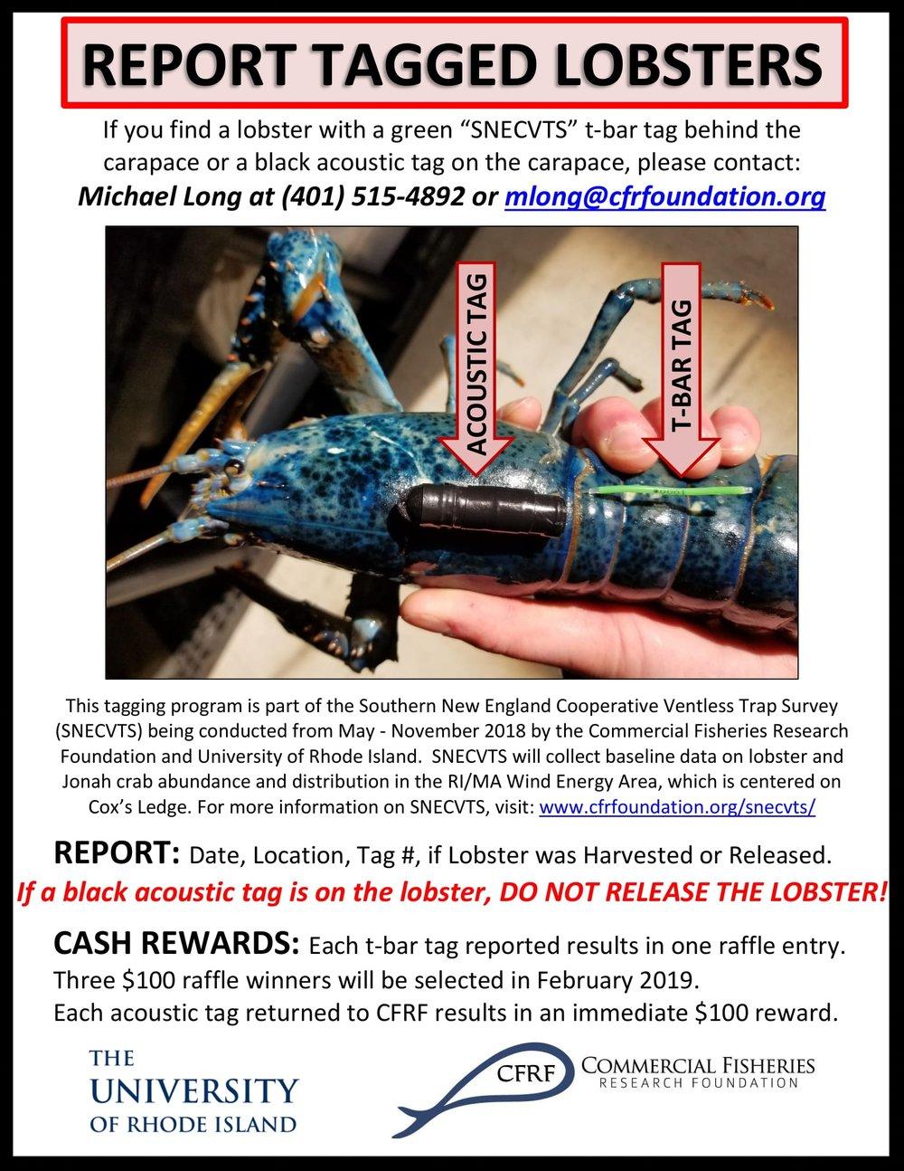 SNECVTS Tag Reporting Flyer.jpg