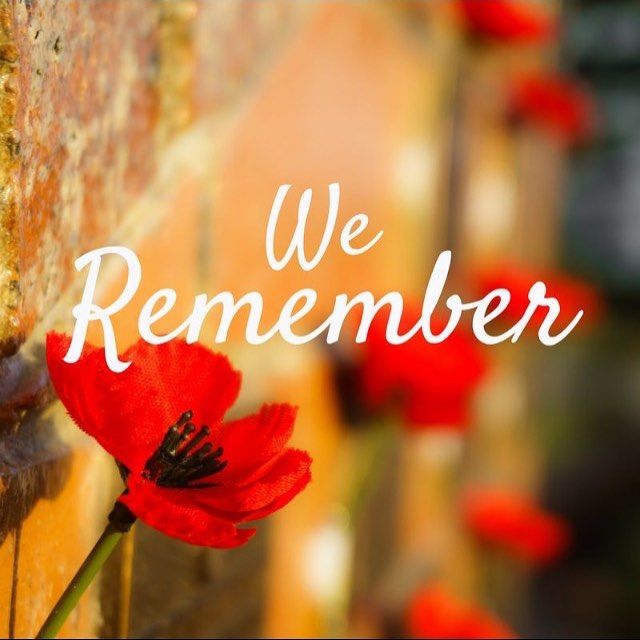 Remembering those that gave their lives in service along with the community today.  In Flanders fields the poppies blow Between the crosses, row on row, That mark our place; and in the sky The larks, still bravely singing, fly Scarce heard amid the guns below.  We are the Dead. Short days ago We lived, felt dawn, saw sunset glow, Loved and were loved, and now we lie In Flanders fields.  Take up our quarrel with the foe: To you from failing hands we throw The torch; be yours to hold it high. If ye break faith with us who die We shall not sleep, though poppies grow In Flanders fields.  #RemembranceDay | #InSightOptical #YourCommunityOptician