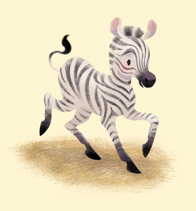 Tanglewood-Park-Zebra_670.jpg