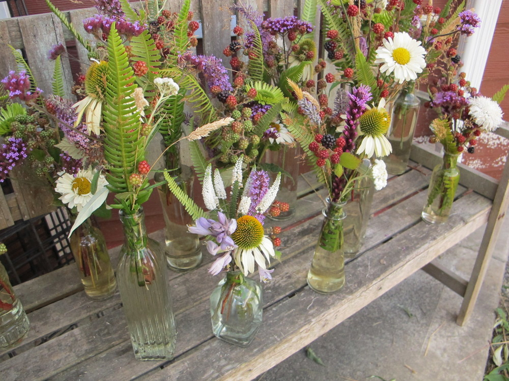 Flora from Lorelee Lane Farm